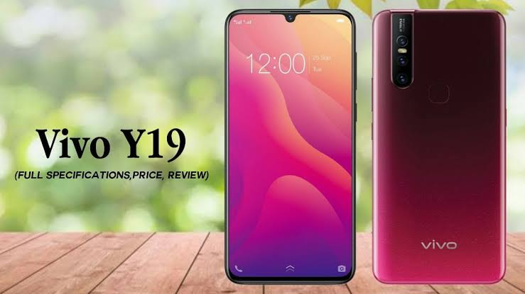 Vivo Y19 features